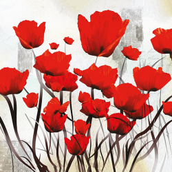 Abstract flowers poppies
