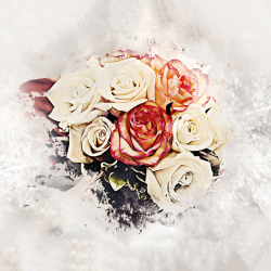 Abstract flowers roses