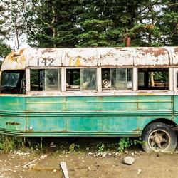 Into the wild van