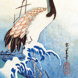 Crane in the waves