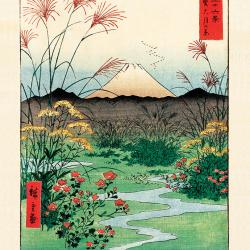 Plain of Otsuki