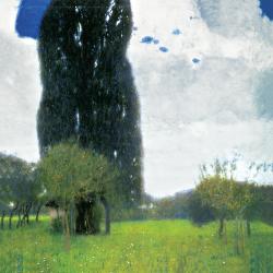 The big poplar