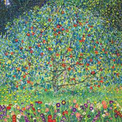 Apple tree I