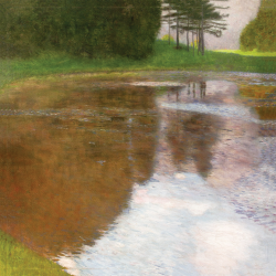 One morning at the pond