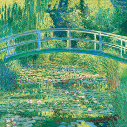 The Pond of the Water Lilies