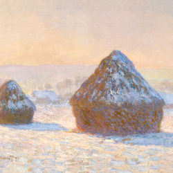 Sheaves of wheat in winter