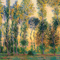Poplars in Giverny