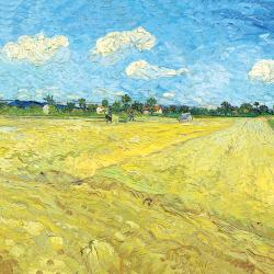 Plowed fields (the furrows)