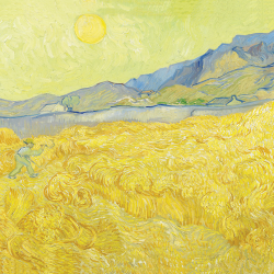 Wheat field with mower