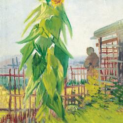 Vegetable garden with sunflower