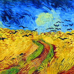 Wheat field with flights of crows