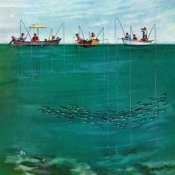 School of Fish Among Lines