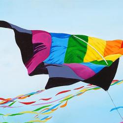 Kite birds