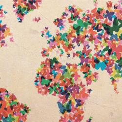 World map butterflies