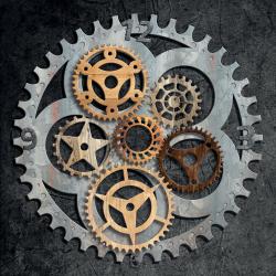 Flower of gears