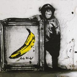 Framework banana monkey