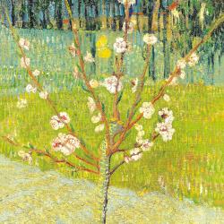 Collage de Van Gogh 2